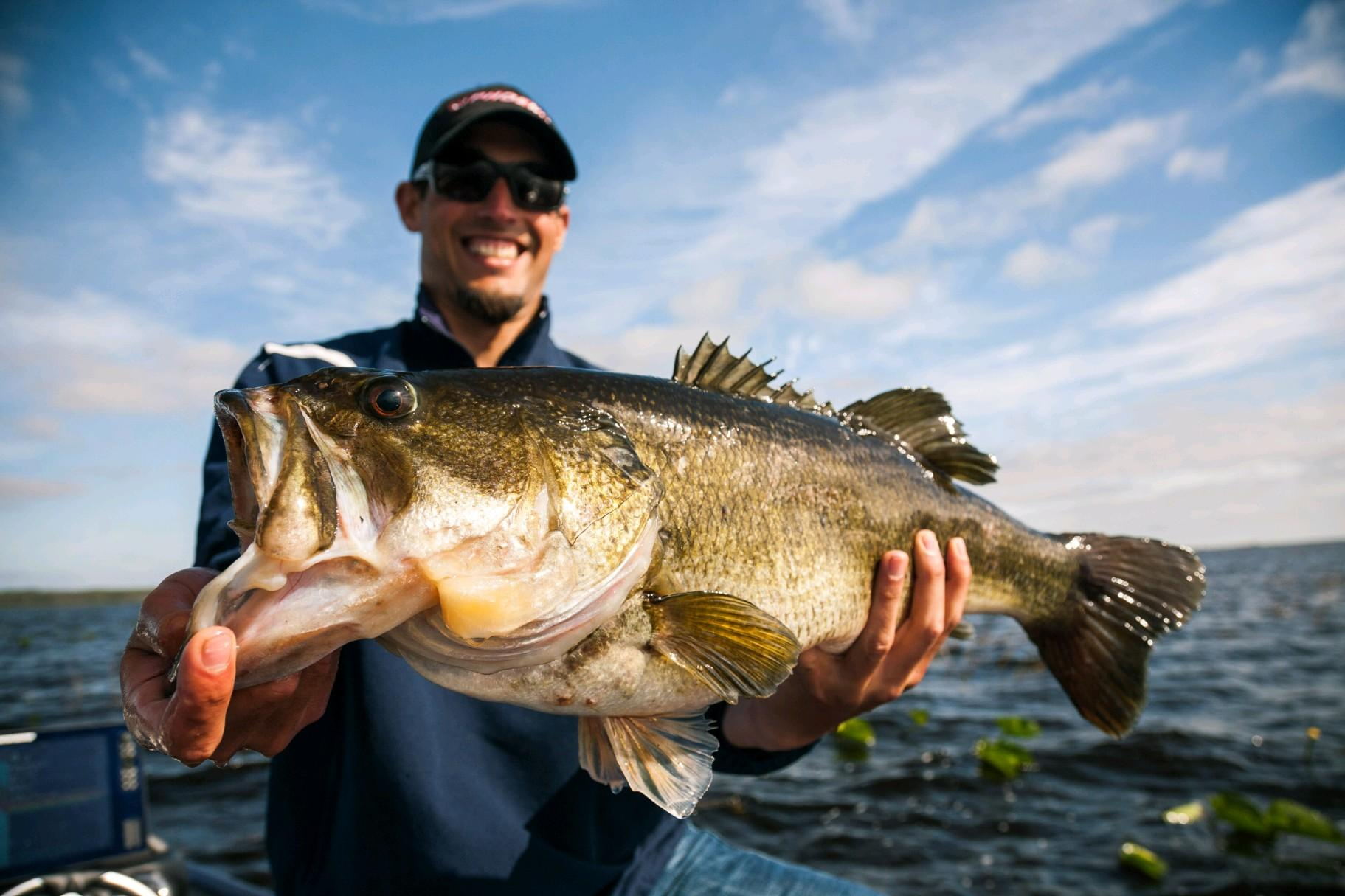 What's the Difference Between Largemouth Bass in Florida and the North?